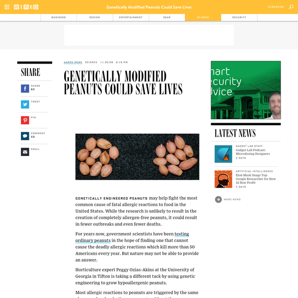 Genetically engineered peanuts may help fight the most common cause of fatal allergic reactions to food in the United States. While the research is unlikely to result in the creation of completely allergen-free peanuts, it could result in fewer outbreaks and even fewer deaths.