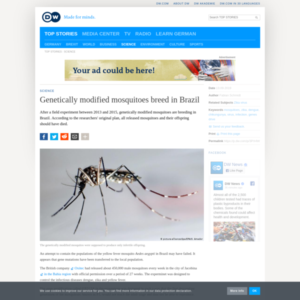 Genetically modified mosquitoes breed in Brazil | DW | 13.09.2019