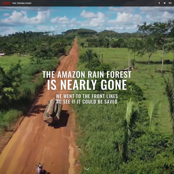 The Amazon Rain Forest Is Nearly Gone. We Went to the Front Lines to See If It Could Be Saved