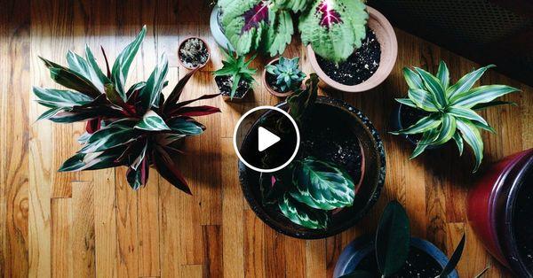 Monday Morning Mixtape 167