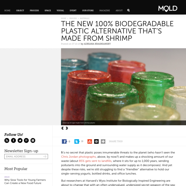 The New 100% Biodegradable Plastic Alternative That's Made From Shrimp