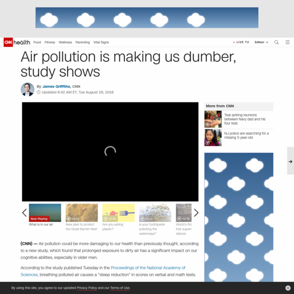 Air pollution is making us dumber, study shows