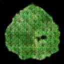 leaf56.png