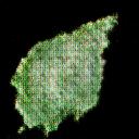 leaf109.png