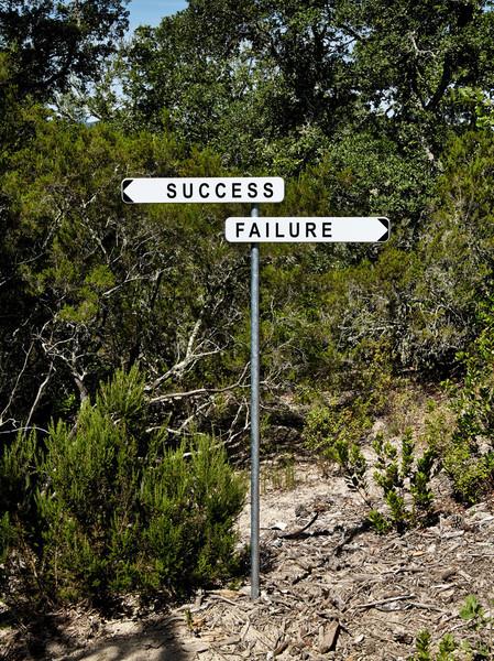 Gianni Motti - Success Failure, 2014