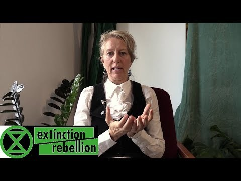 Dr. Gail Bradbrook | Strategy Based in an Ecology of Theories of Change | Extinction Rebellion
