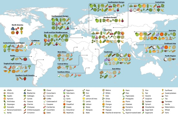 Origin of fruits and vegetables map