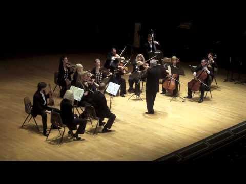 "Arnold Schoenberg ""Verklarte Nacht"" (Transfigured Night) Op. 4 for String Orchestra"