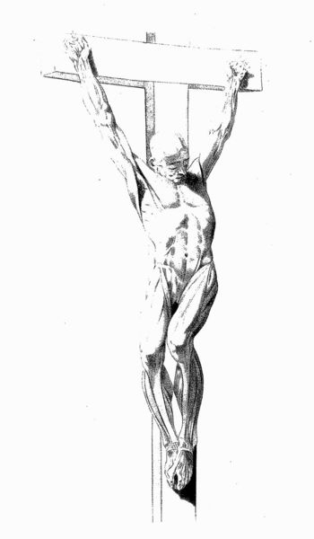800px-crucified_ecorche-_jacques_gamelin_wellcome_l0020560.jpg