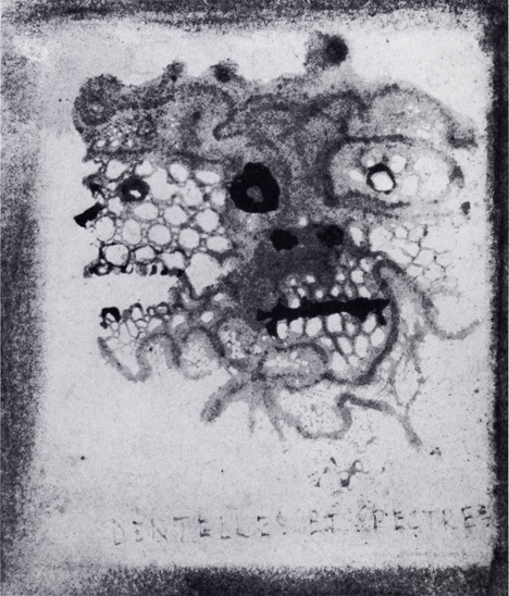 victor_hugo-lace_and_ghosts-c_1855-6-wash_lace_imprint_and_ink-6.5x6cm-maison_de_victor_hugo_paris.jpg