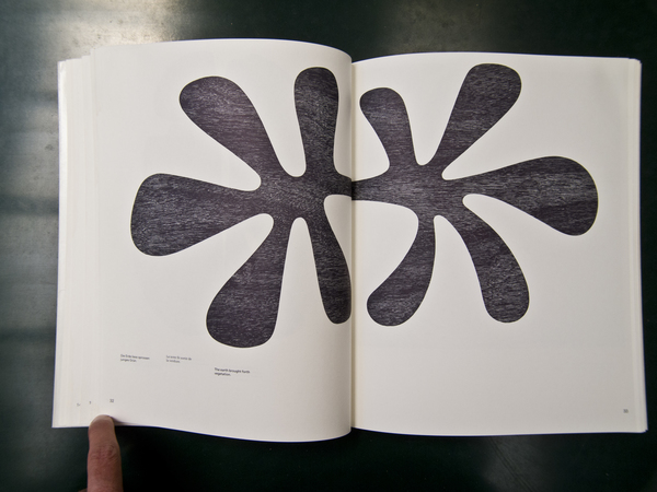 Adrian Frutiger - Forms and Counterforms