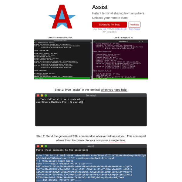 Assist - Instant terminal sharing from anywhere