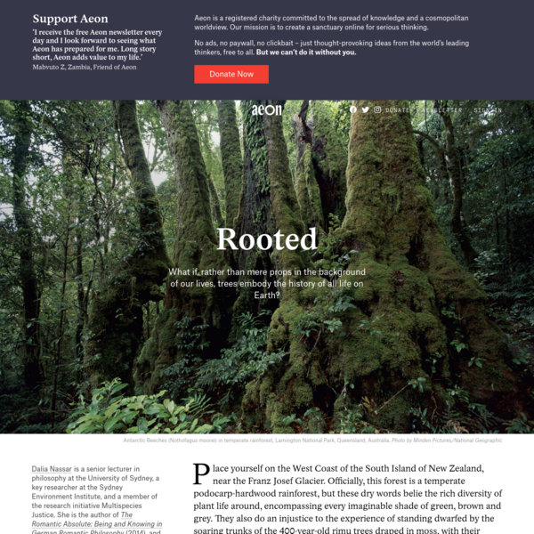Rooted | Aeon