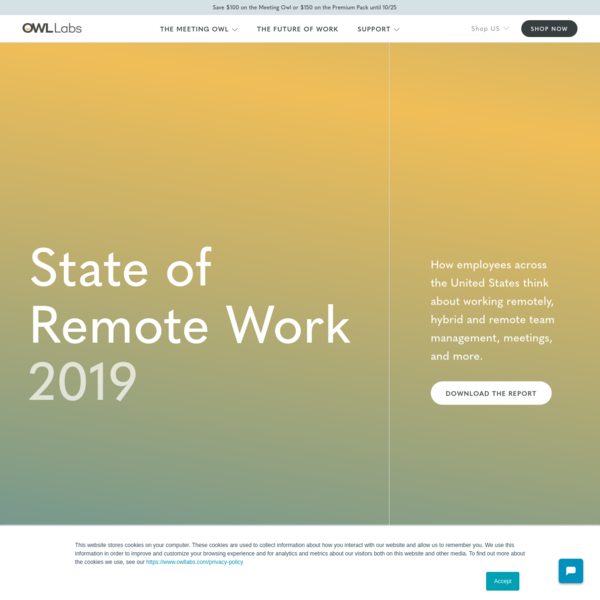 2019 State of Remote Work Report