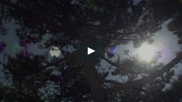 MANSHIN Trailer ENG