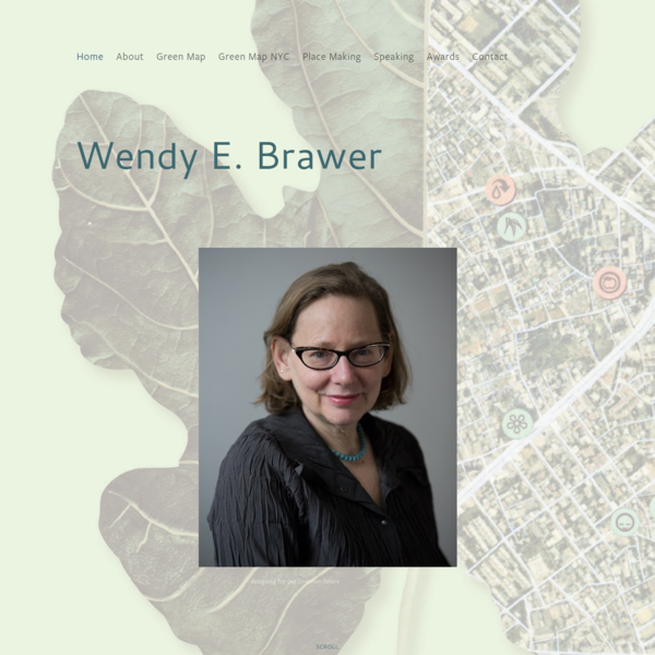 Wendy E. Brawer