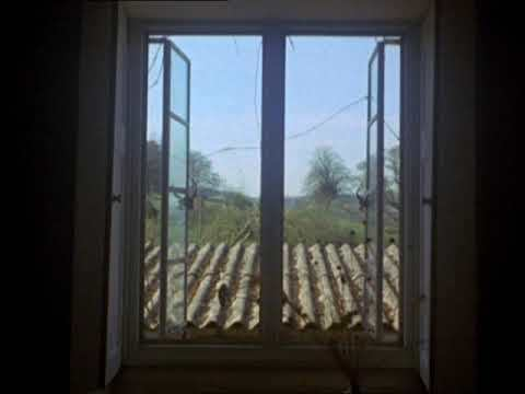 Windows (Peter Greenaway, 1975) VOSE