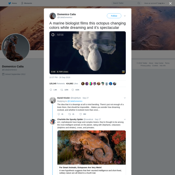 Domenico Calia on Twitter