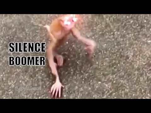 Silence Boomer Monkey Lazer