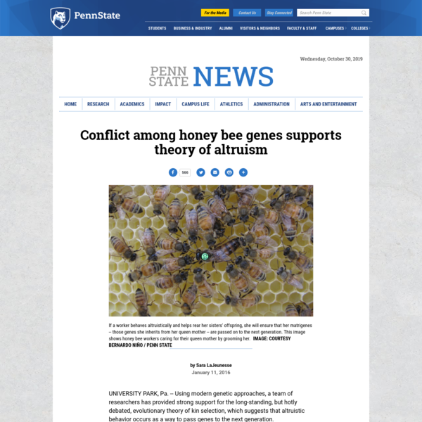 Conflict among honey bee genes supports theory of altruism | Penn State University