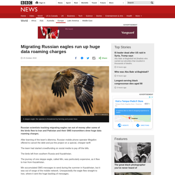 Migrating eagles run up huge data roaming charges