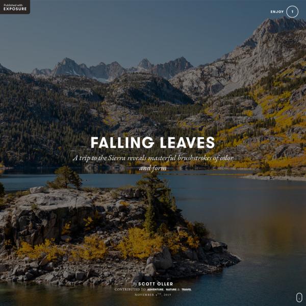 FALLING LEAVES by Scott Oller on Exposure
