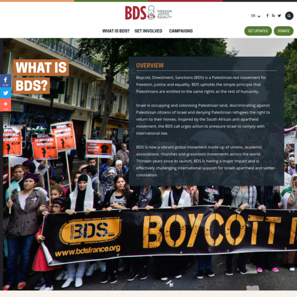 What is BDS?