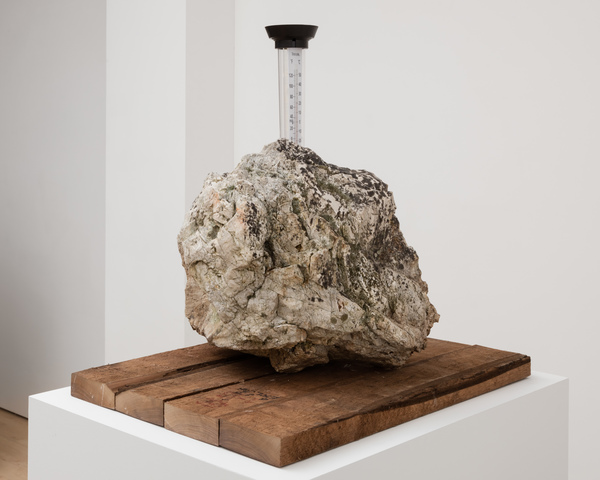 2019.11 Charles Harlan: Mountain Lake, Rain Gauge, 2019