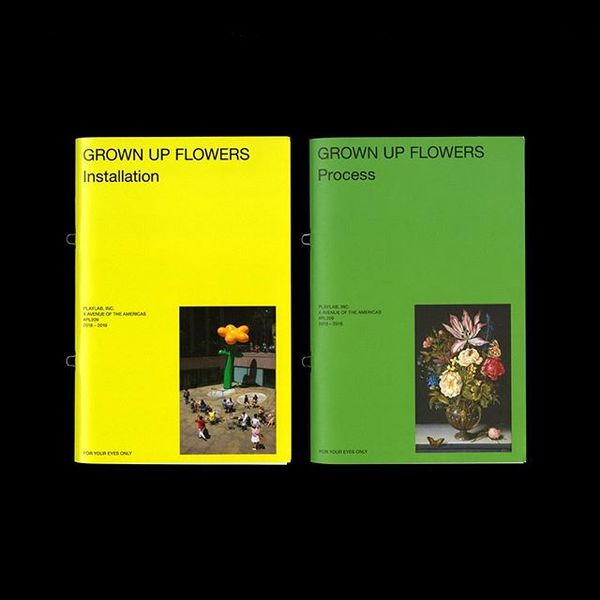 PLAYLAB Project Books: Grown Up Flowers (#PL209) available at actualsource.org An ongoing series of zines that documents the...
