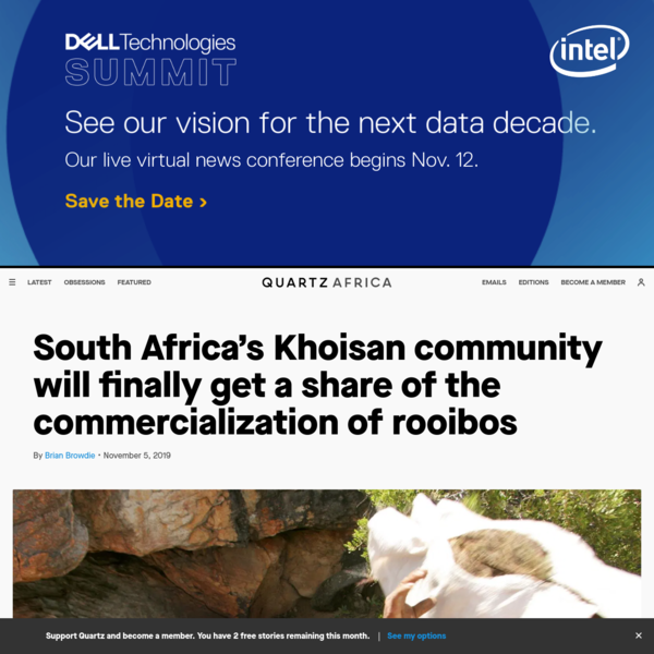 South Africa's Khoisan community will finally get a share of the commercialization of rooibos