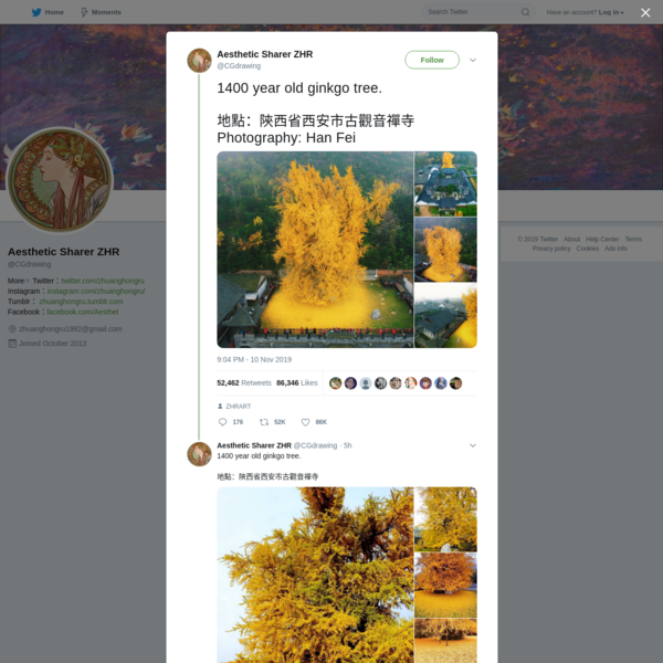Aesthetic Sharer ZHR on Twitter