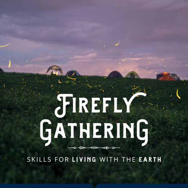 Home - Firefly Gathering