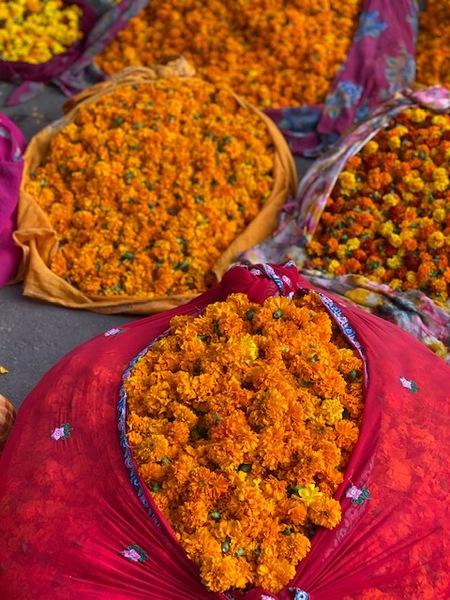 jaipur-flower-market.jpg