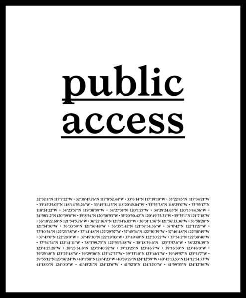 David Horvitz & Ed Steck, Public Access