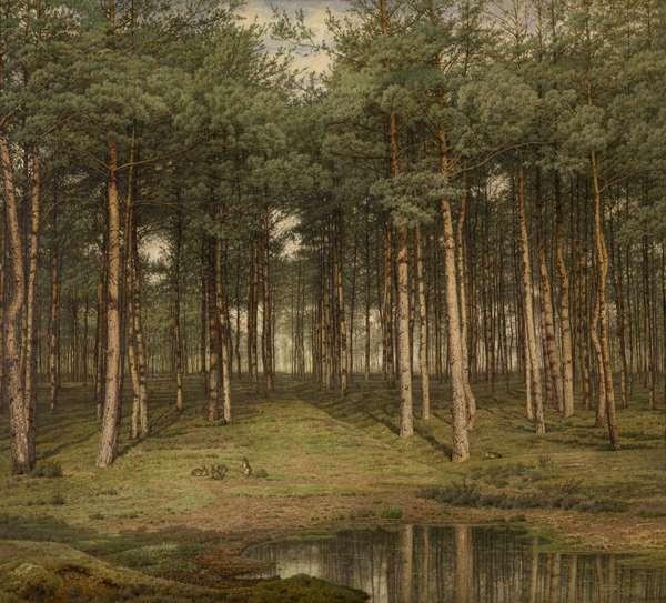 atlas-of-places-jean-pierre-francois-lamoriniere-augmented-nature-gph-8.jpg