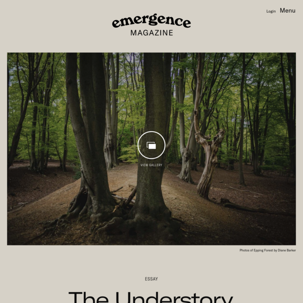 The Understory - Emergence Magazine