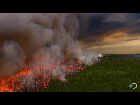 Filming a Raging Forest Fire | North America