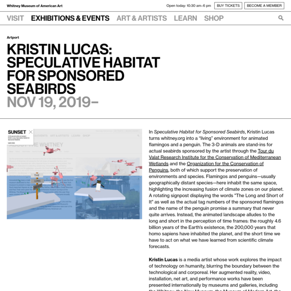 Kristin Lucas: Speculative Habitat for Sponsored Seabirds