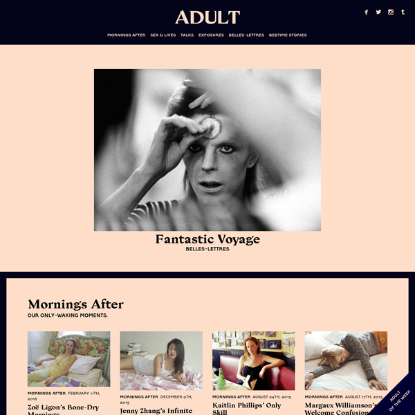 Adult is a magazine of contemporary erotics and experience. The first print issue was made by Sarah Nicole Prickett, Berkeley Poole, Noah Wunsch, and Jai Lennard, and came out in the fall of 2013; the next, led by Prickett and Poole, is slated for spring.