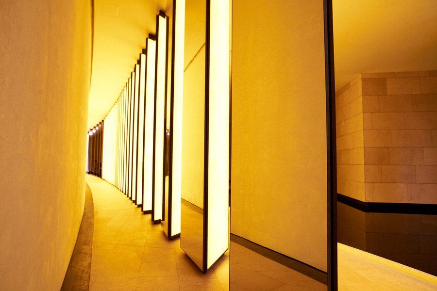 "Frank Gehry ""Fondation Louis Vuitton"""