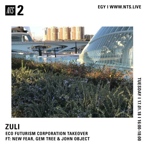 NTS 018 [16 January 2018] Eco Futurism Corporation takeover w/ NEW FEAR, Gem Tree & John Object by ZULI