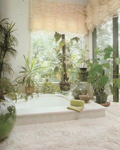 plants-in-bathroom.jpg