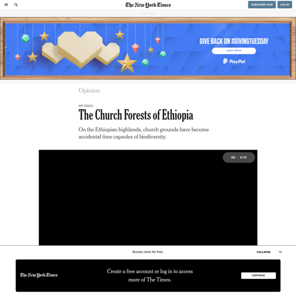 Opinion | The Church Forests of Ethiopia