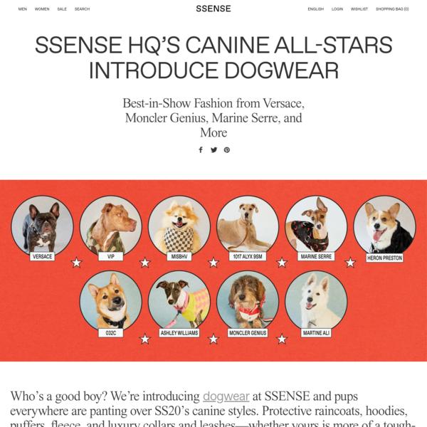 SSENSE HQ's Canine All-Stars Introduce Dogwear