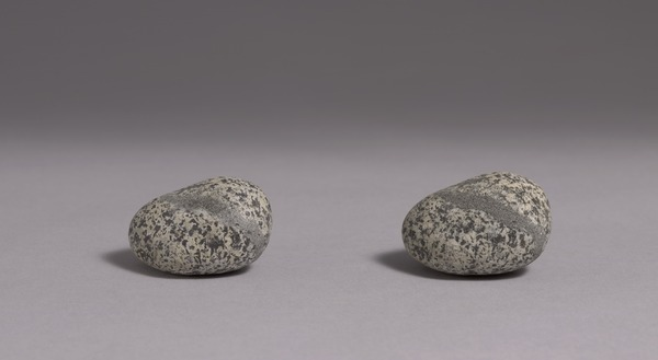 Vija Celmins, To Fix the Image in Memory (1977–82)