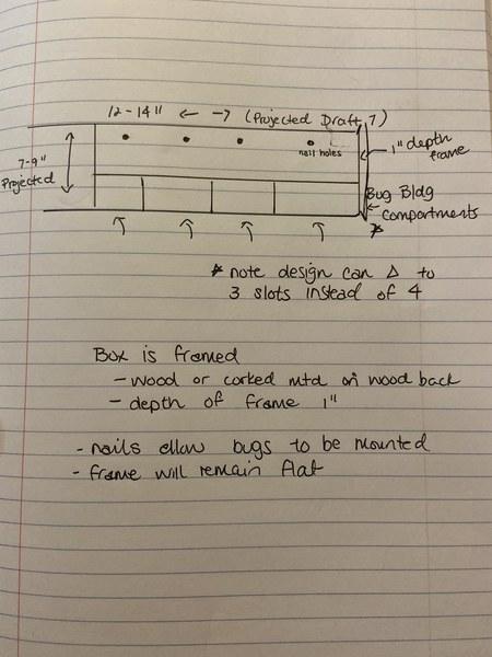design-notes-bugbox.jpeg