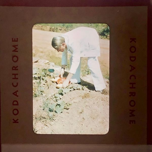 Josef Albers tending his victory garden, Black Mountain College, summer 1944, photo by Josef Breitenbach