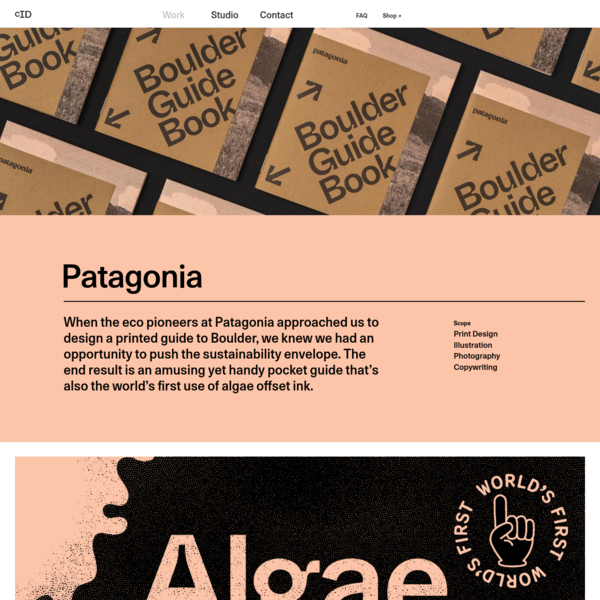 Patagonia * Cast Iron Design * Sustainable Graphic Design & Branding