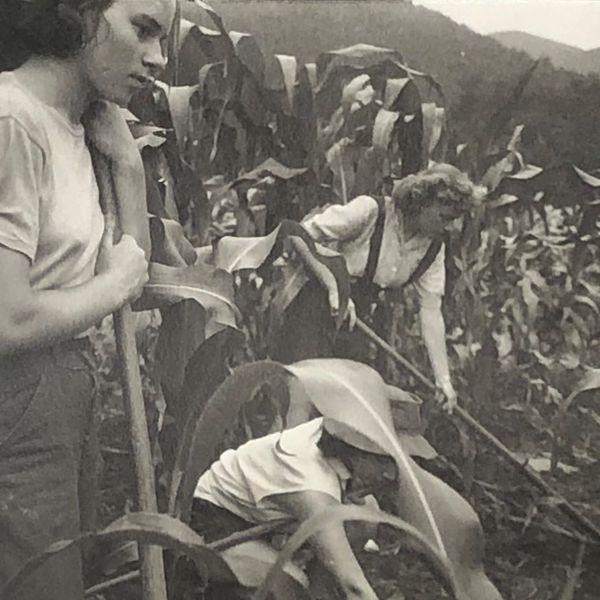 (More) students farming, Black Mountain College, summer 1944. Josef Breitenbach