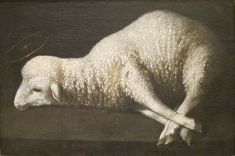 800px-agnus_dei_-the_lamb_of_god-_by_zurbar-n-_san_diego_museum_of_art.jpg